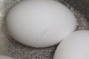 気泡がでてきた卵